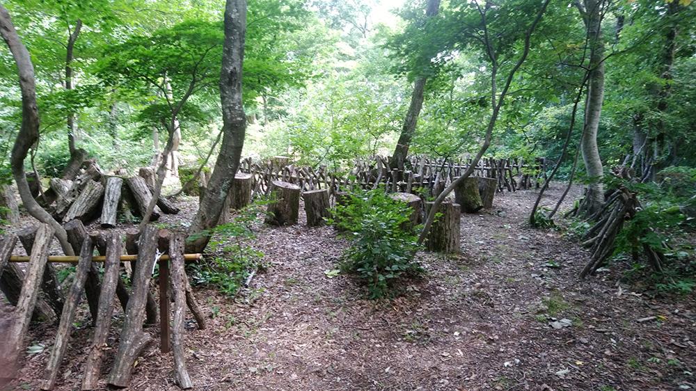 雑木林内夏のホダ場